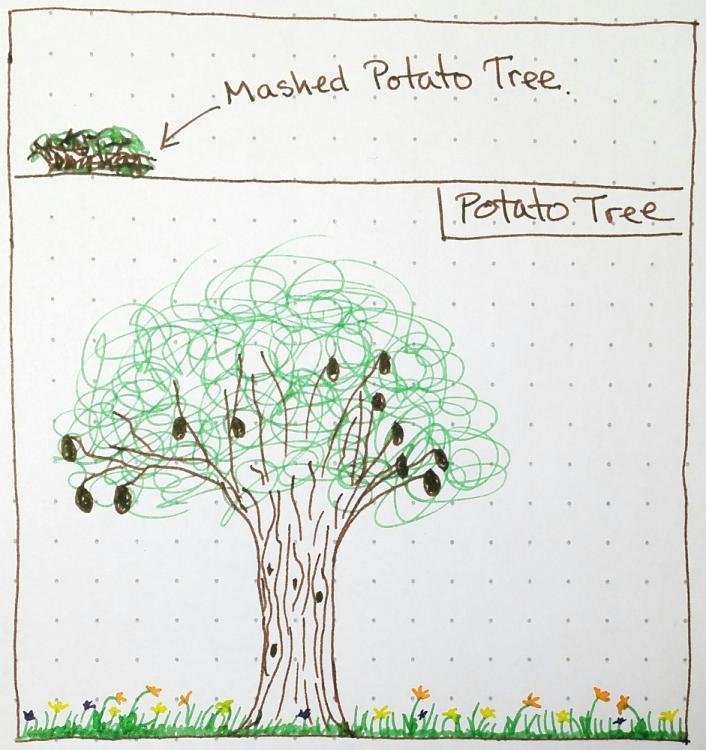 potatotree.thumb.jpg.b2b828c64d2ac669ab446032b8b164b3.jpg