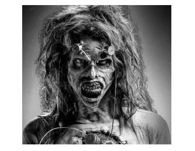 zombie.png.ac46640a8de1d789d1d0af5c0b37a562.png
