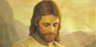 jesus christ protects mormonism