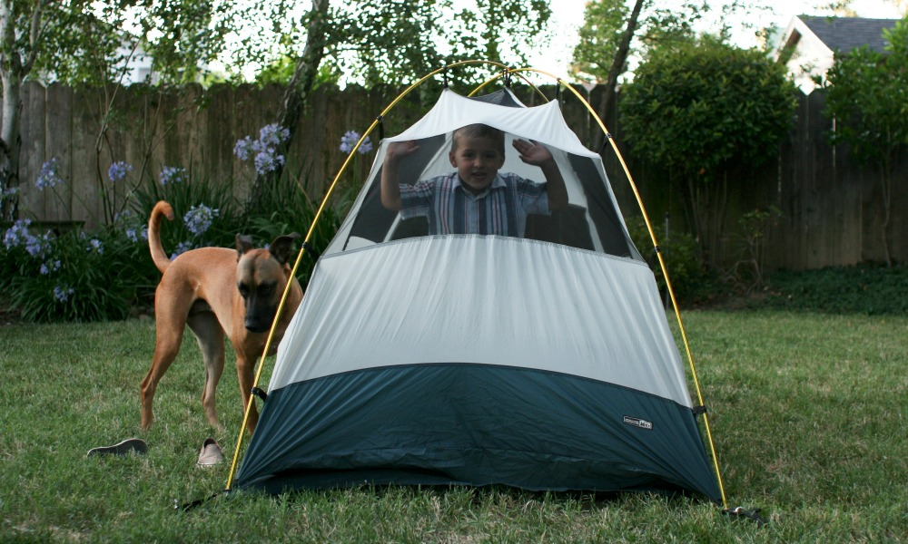 Boy stands in a tent in the backyard