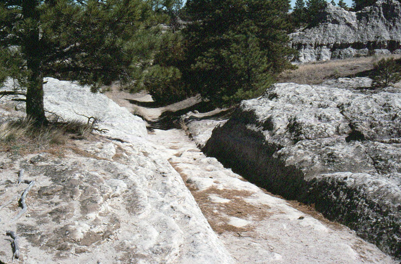 Ruts in Guernsey, Wyoming