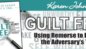 Karen John's Guilt Free book
