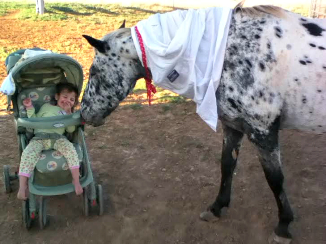 Horse dressed as Mormon missionary with toddler