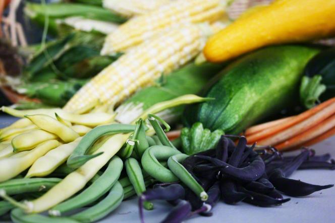 vegetable garden produce