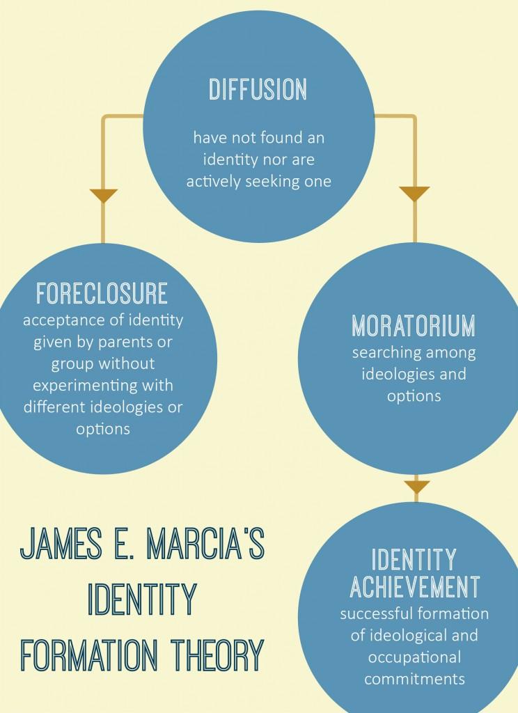 Identity Formation Theory meme