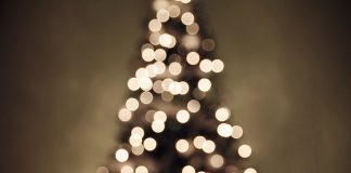Out-of-focus image of a Christmas tree with lights.