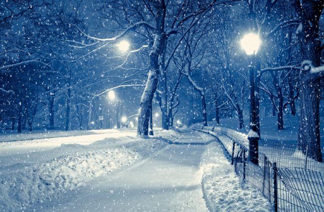 Winter suburban landscape at night.