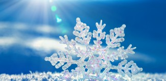 Snow. snowflake, cold, cold weather