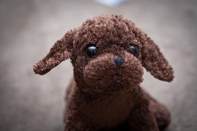 stuffed animal dog