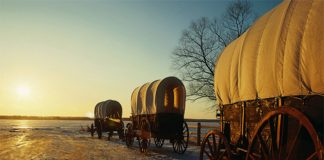Pioneer wagons travel down snowy trail