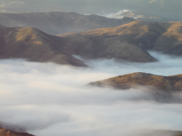 Fog in mountains