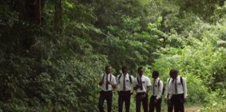 missionaries walking through African forest