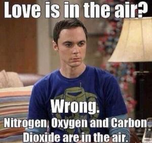 Big Bang Theory love
