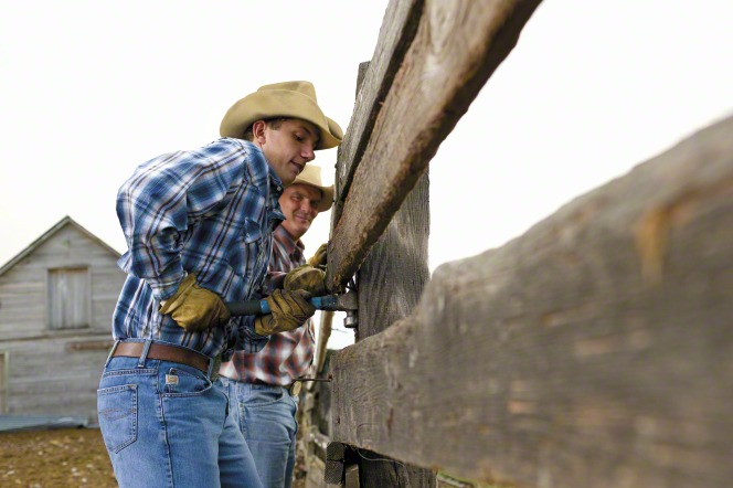 An early returned missionary helping fix a ranch fence