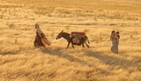 Joseph, Mary, and Jesus flees to Egypt