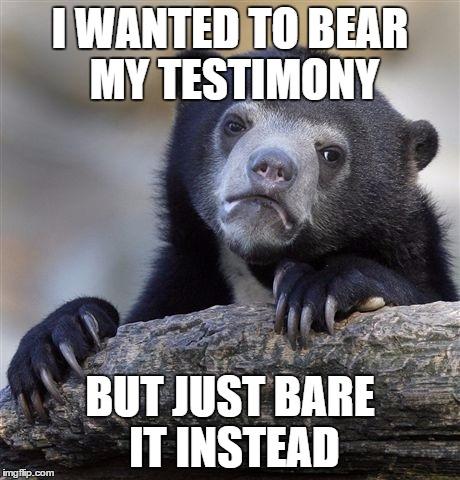 Bear Testimony