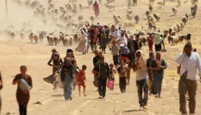 Refugees in desert