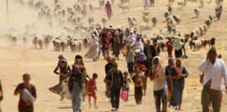 Refugees in desert