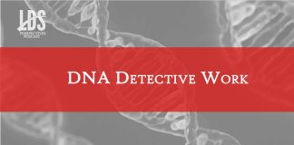 LDS Perspectives DNA Detective Work title