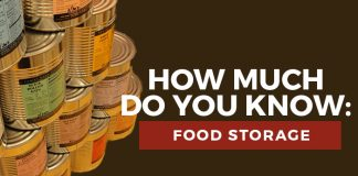 food storage quiz title graphic