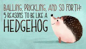 be like a hedgehog