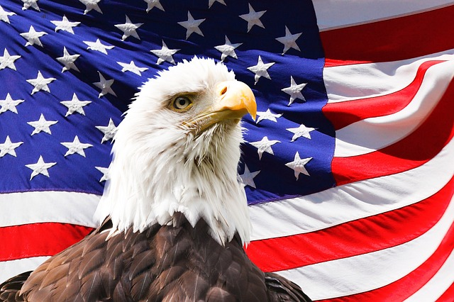 banner of freedom