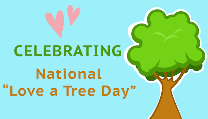 national love a tree day