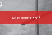 LDS Perspectives title graphic mere Christians