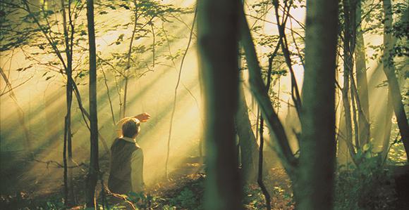 Joseph Smith kneeling in grove