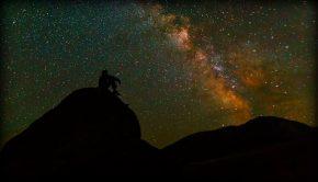 Silhouette of man thinking under stars