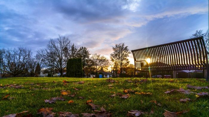 A park at sunset