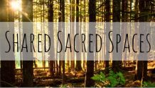 sacred space sacred grove