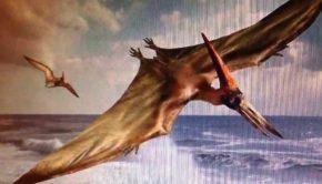 pterodactyl art