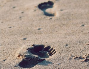 Two distinct footprints are seen in the sand in an apparent forward walking order