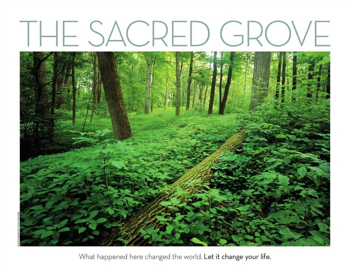 sacred grove outdoors