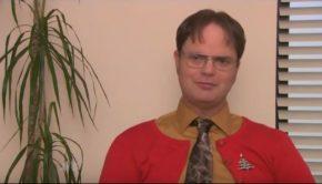 Rainn Wilson's character, Dwight Schrute from The Office