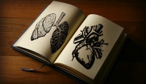 Open book with pictures of organs