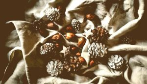 An array of pine cones, nuts and wooden stars are spread haphazardly on a crumpled white sheet