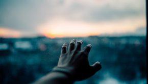 hand reaching to light