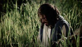 Savior at Gethsemane