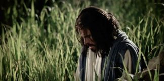 Savior at Gethsemane