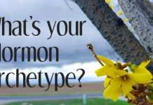 What's your Mormon Archetype with forsythia flowers