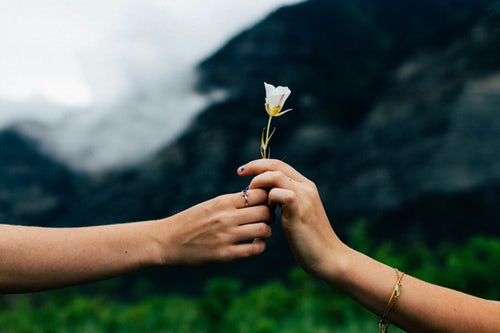 Passing a flower from one hand to another