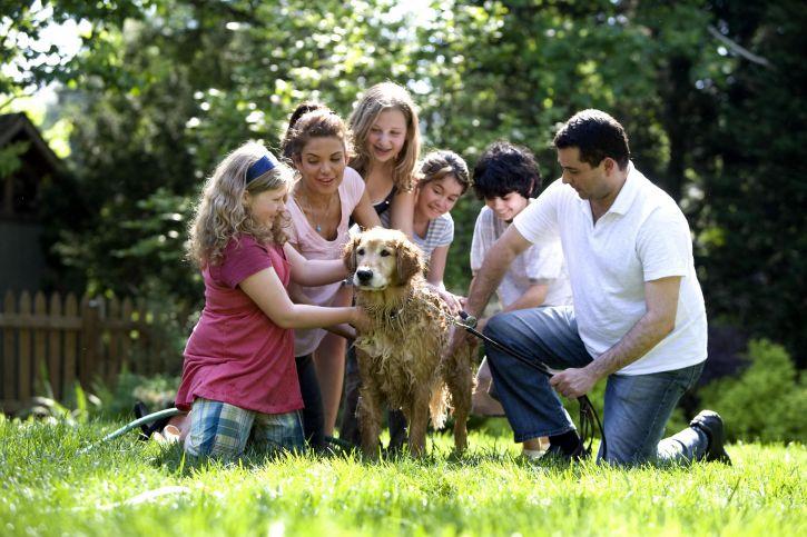 family bonding, family washing dog, FHE