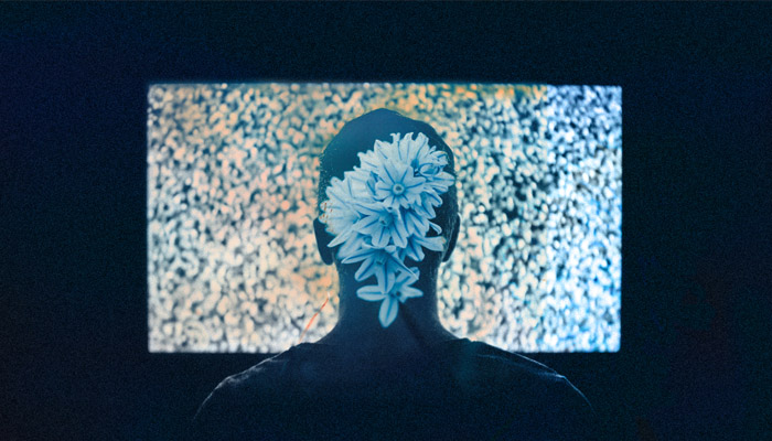 man with flowers on his head watches television static rumors of war
