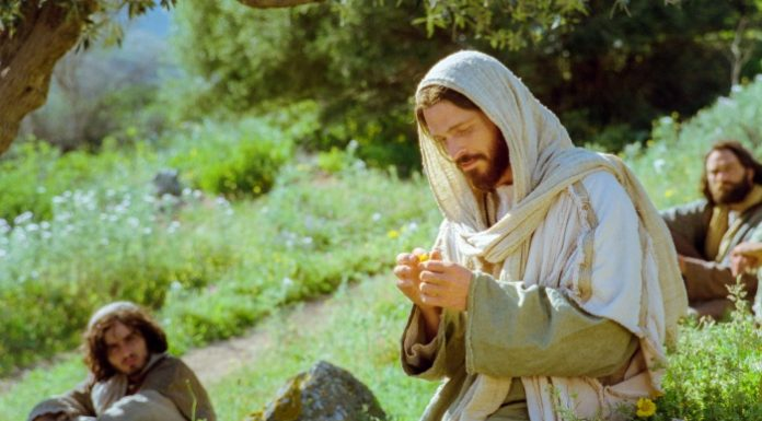 christ holding a flower