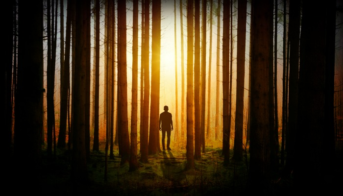 Man walking in dark woods towards light.