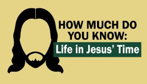 Life of Jesus quiz graphic