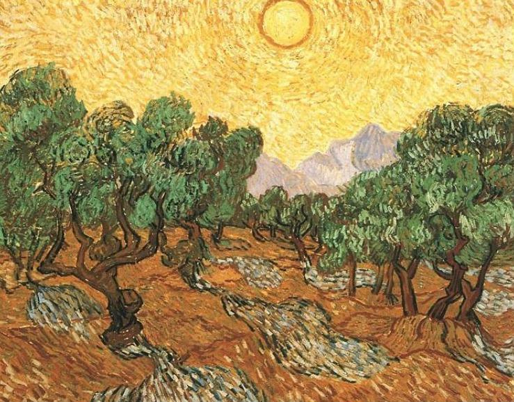 Olive Trees Van Gogh