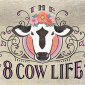 8 cow life podcast
